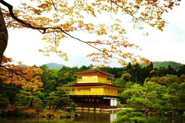 日本本州双古都温泉七日游